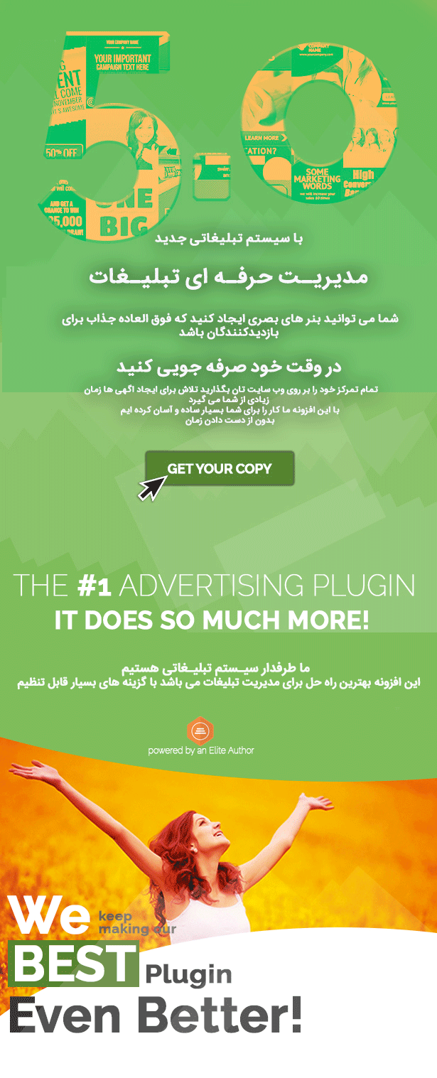افزونه WP Pro Advertising